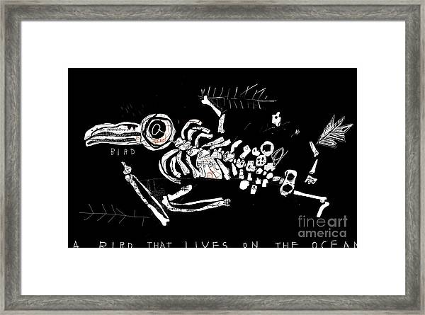 The Skeleton Of A Bird Which Ate Framed Print