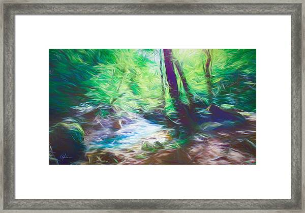 The Stream In The Forest Framed Print
