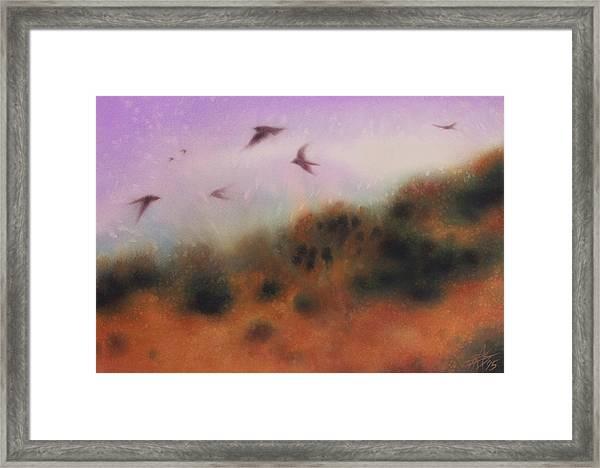 The Swallows Return  Framed Print by Robin Street-Morris