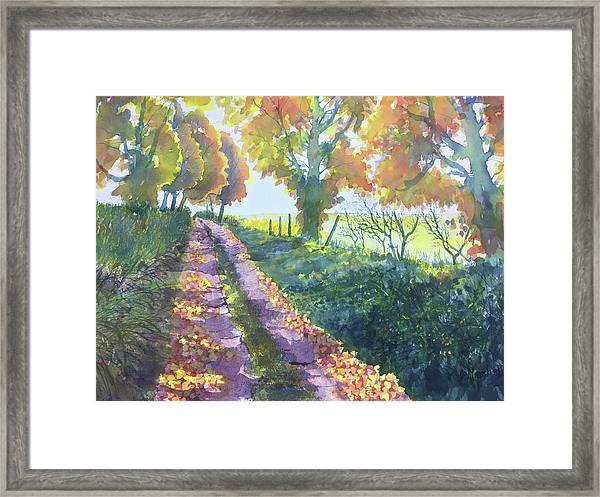 The Tunnel In Autumn Framed Print