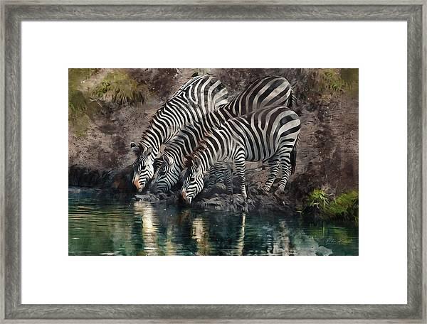 The Waterhole Framed Print