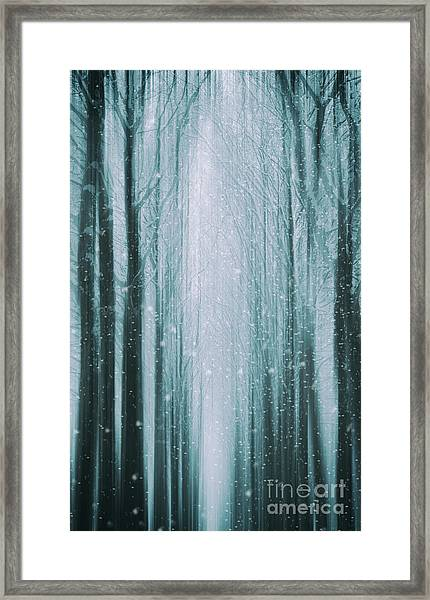 The Winter Wood Framed Print