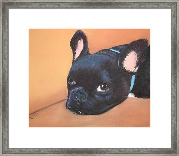 This Is Max Framed Print