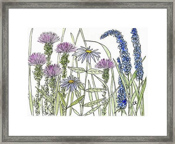 Thistle Asters Blue Flower Watercolor Wildflower Framed Print