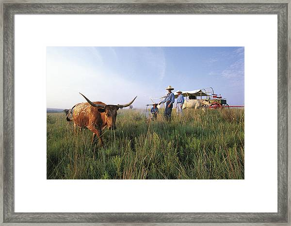 Three Cowboys Standing By Texas Framed Print