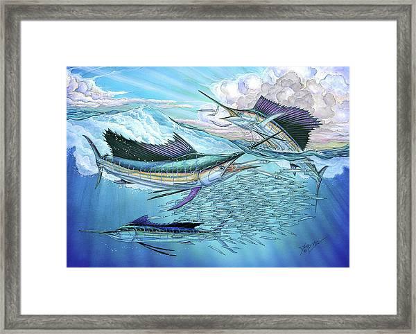 Three Sailfish And Bait Ball Framed Print