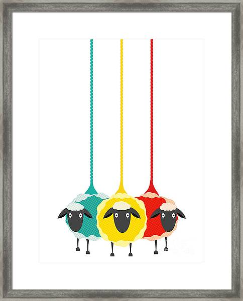Three Yarn Sheep. Vector Eps10 Graphic Framed Print by Popmarleo