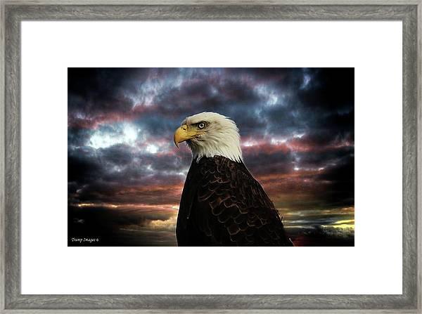 Thunder Eagle Framed Print