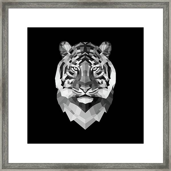 Tiger's Face Framed Print