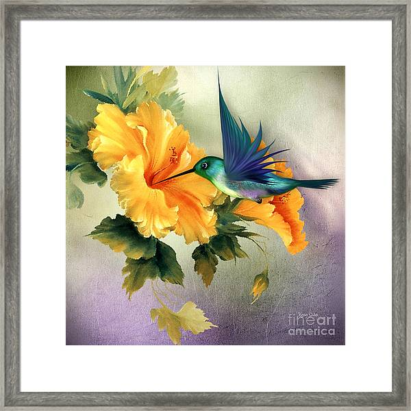 Tiny Wings Framed Print