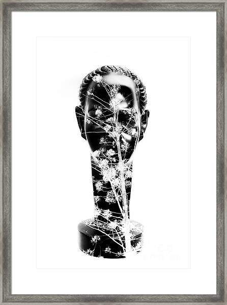 To Plant A Seed Framed Print