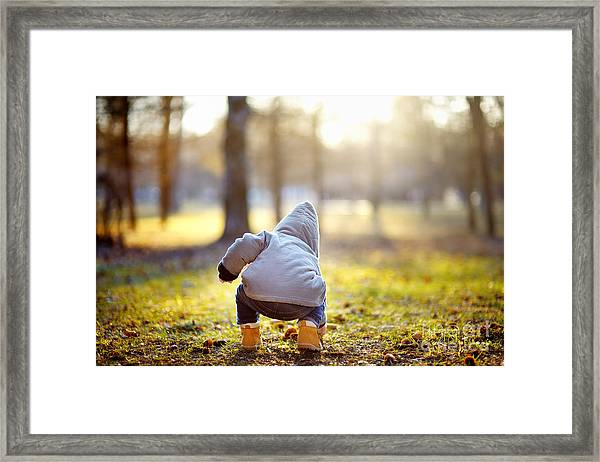 Toddler Boy Walking Outdoors At The Framed Print