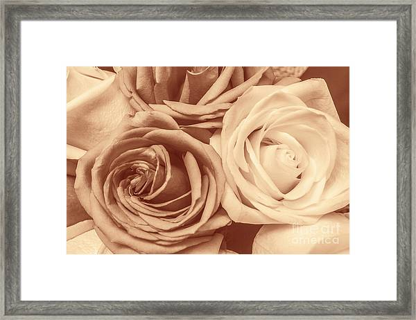 Touching Harmony Framed Print
