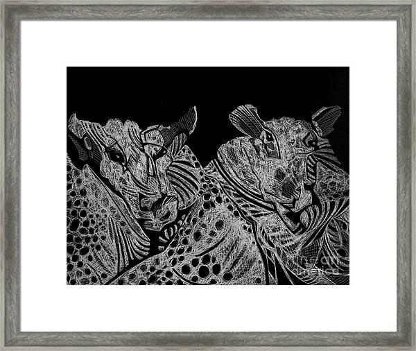 Tough Rams Framed Print