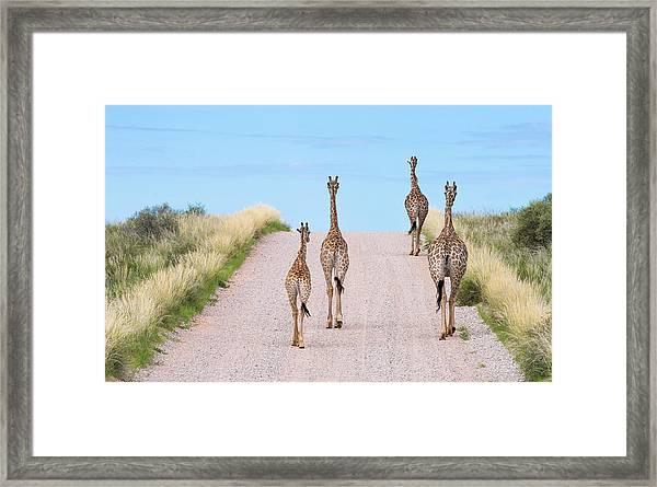 Tower Road Framed Print