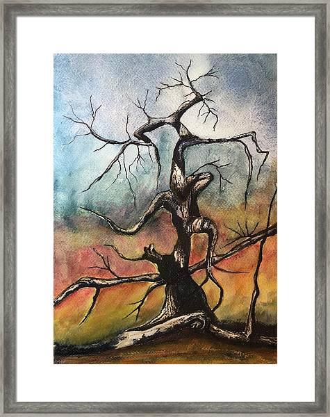 Tree 2 Framed Print