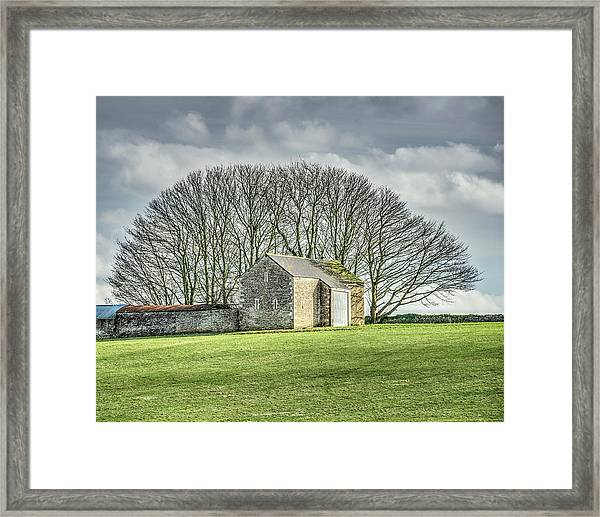 Tree Fan Framed Print