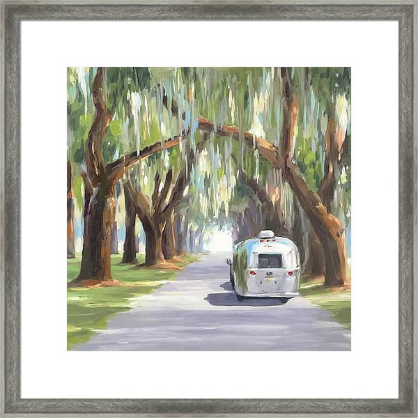 Tree Tunnel Framed Print
