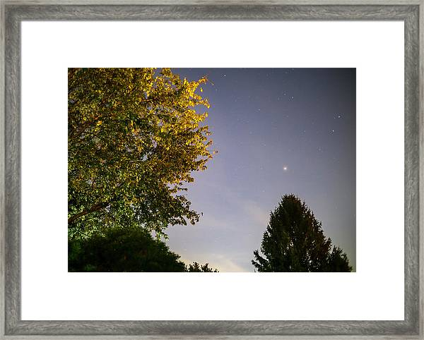 Trees And Stars Framed Print