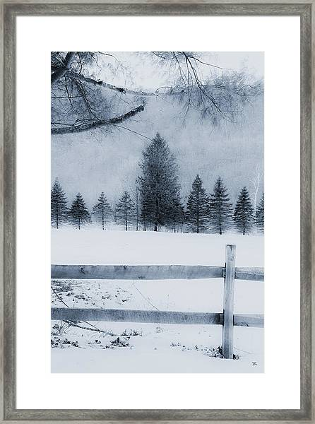 Trees In Frost Valley Framed Print