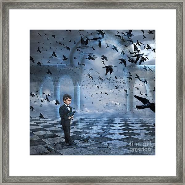 Tristan's Birds Framed Print