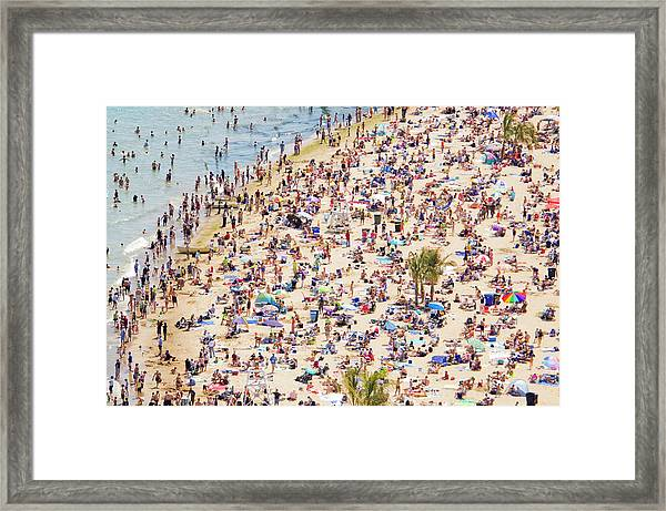 Tropical Chicago Framed Print by By Ken Ilio