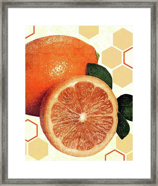 Tropical Print - Orange, Grapefruit, Tangerine - Modern Wall Art Print - Tropical Poster Framed Print
