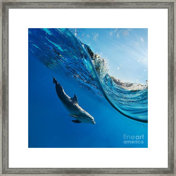 Tropical Seascape With Water Waved Framed Print