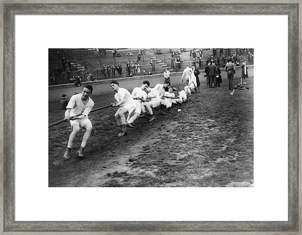 Tug Of War Framed Print