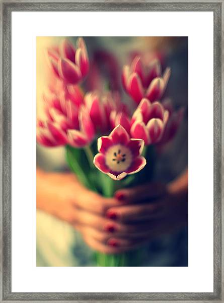 Tulips In Woman Hands Framed Print
