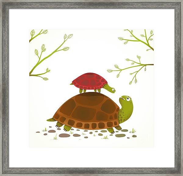 Turtle Mother And Baby Childish Animal Framed Print