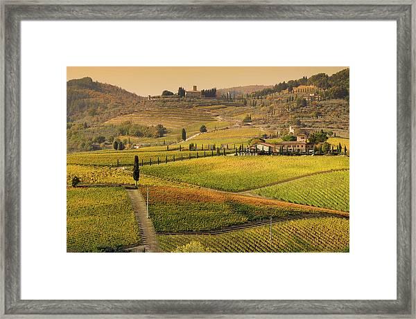 Tuscany Farmhouse And Vineyard In Fall Framed Print