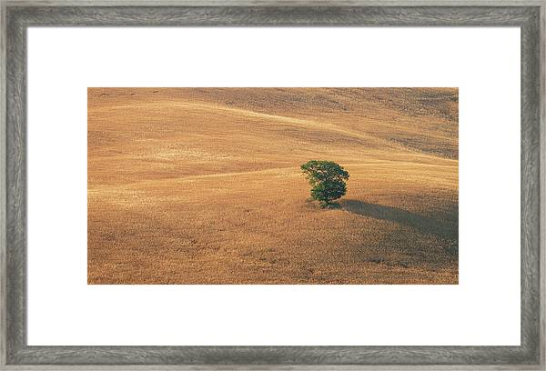 Framed Print featuring the photograph Tuscany by Mirko Chessari