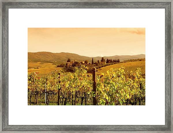 Tuscany Village And Vineyard In Fall At Framed Print