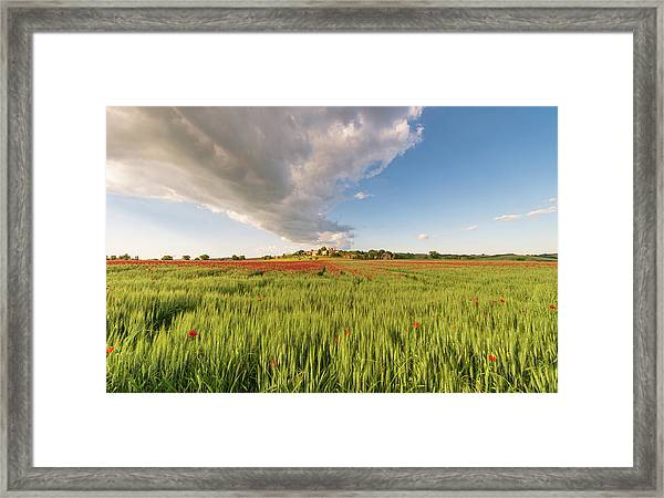 Framed Print featuring the photograph Tuscany Wheat Field Dotted With Red Poppies by Mirko Chessari