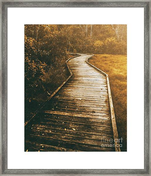 Twisting Trails Framed Print