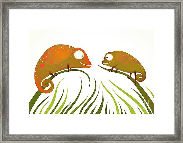 Two Colorful Lizards Sitting On Grass Framed Print