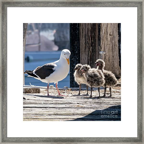 Two Months Later Framed Print