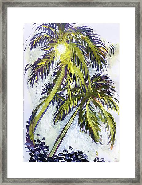 Two Palm Sketch Framed Print