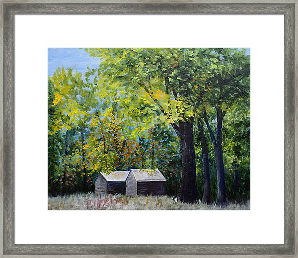 Two Sheds In The Trees Framed Print