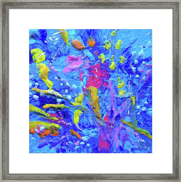 Under The Reef - Detail Framed Print