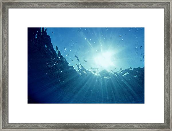 Underwater Looking Up Teahupoo, Tahiti Framed Print by Scott Winer