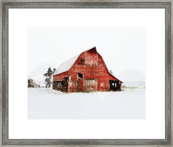 Undignified Death Framed Print
