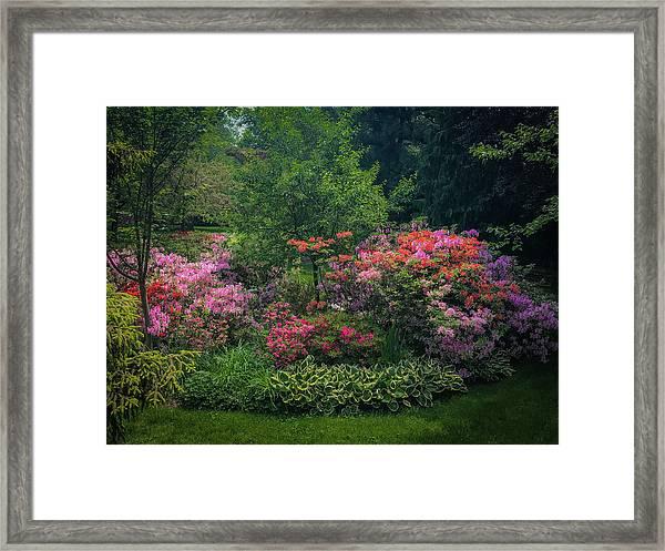 Urban Flower Garden Framed Print