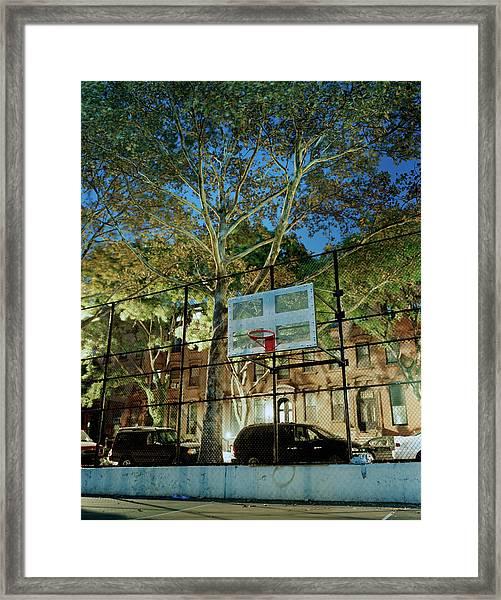 Usa, New York, Brooklyn, Fort Greene Framed Print