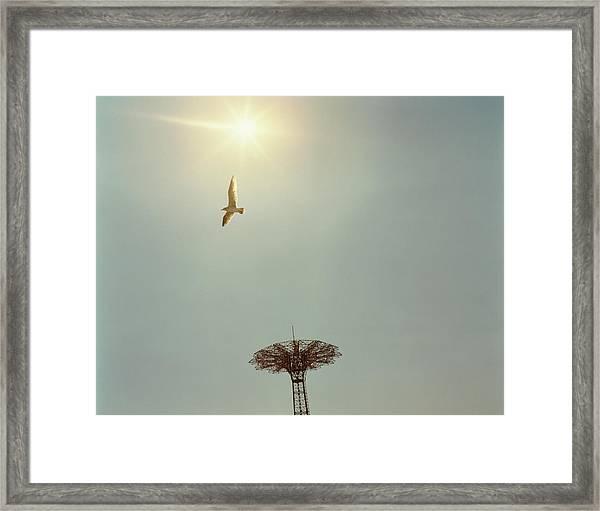 Usa, New York, Coney Island Amusement Framed Print