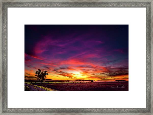 Valentine Sunset Framed Print