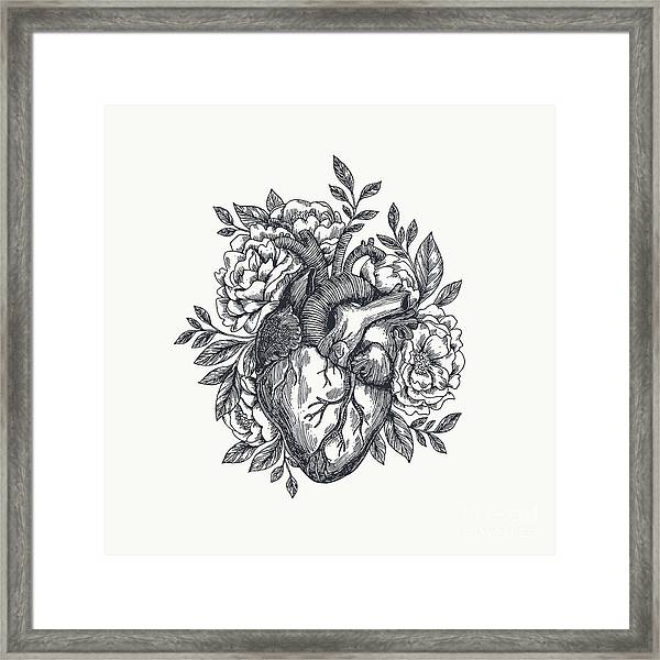 Valentines Day Card. Anatomical Heart Framed Print
