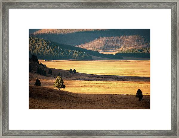 Valles Caldera Detail Framed Print