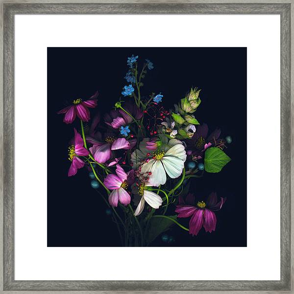 Variety Of Flowers Against Black Framed Print